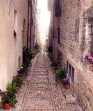 Alley. Of a medieval village Stock Photography