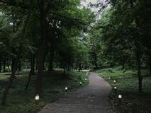 Alley in middle of a park. A path in middle of a park perfect to walk in quite royalty free stock photo