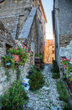 Alley in Motovun in Istria Stock Photography