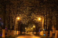 Alley in night city Royalty Free Stock Photo