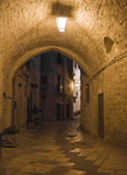 Alley by night. Giovinazzo. Apulia. Royalty Free Stock Photography