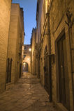 Alley by night. Giovinazzo. Apulia. Royalty Free Stock Image