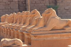 Free Alley Of Sphinxes At Karnak Temple Complex In Luxor, Egypt Stock Image - 175907791