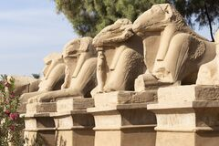 Free Alley Of The Ram-headed Sphinxes. Karnak Temple Stock Images - 170636254