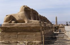 Free Alley Of The Ram-headed Sphinxes. Karnak Temple. Luxor, Egypt. Stock Image - 168125841