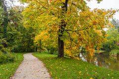 Alley in Old Autumn Park Stock Photography
