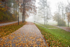 Alley in Old Autumn Park Royalty Free Stock Photo