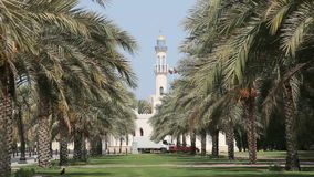 Alley with palm trees in Muscat, Oman. Alley with palm trees in Muscat, Kingdom of Oman, Middle East stock footage