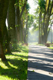 Alley in park Royalty Free Stock Photography