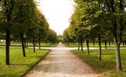 Alley in park, Arkhangelskoe Stock Images