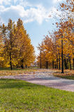 Alley in a park, autumn. Sosnowiec, Poland Royalty Free Stock Images