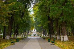 Alley park with benches. Royalty Free Stock Photos