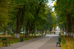 Alley park with benches. Stock Photography