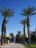 Alley in the park, Eilat Stock Photo