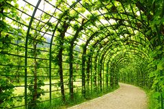 Alley Park in the Linderhof Palace. Germany Royalty Free Stock Photo