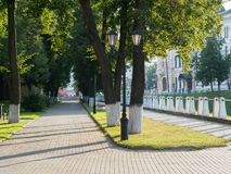 Alley in the park in morning light. royalty free stock photo