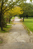 Alley in the park Royalty Free Stock Images