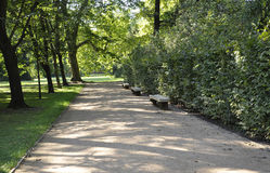 Alley in the Park from Sanssouci in Potsdam,Germany royalty free stock image