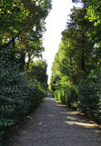 Alley in the Park from Sanssouci in Potsdam,Germany stock images