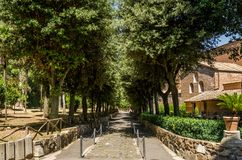 Alley in the park among the trees of the Abbazia delle Tre Fontane, in the martyrdom of the apostle Paul in Rome, Italy Royalty Free Stock Photography