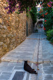 Alley in the picturesque village Grimaud, France royalty free stock image
