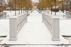 An alley in the Polish Garden in winter in Saint Petersburg. Royalty Free Stock Photo