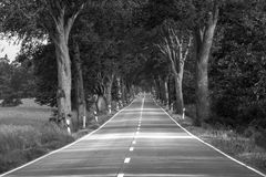 Alley Road Royalty Free Stock Image