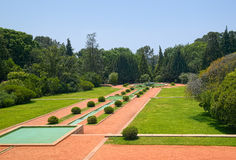 Alley in the Serralves Park Stock Photos