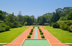 Alley in Serralves Park of Porto Stock Photo