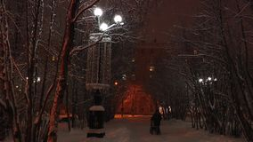 The alley in snow-covered park and the walking young mother with a carriage. Winter park by the light of the streetlights lighting the trees covered with snow stock footage