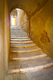 Alley in Sorano. Stone steps in a remote alley in the picturesque medieval town of Sorano, Grosseto, Tuscany, Italy Royalty Free Stock Photography
