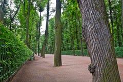 Alley in the Summer Gardens park in Saint-Petersburg Stock Photo