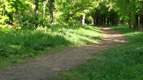 Alley in summer park stock footage