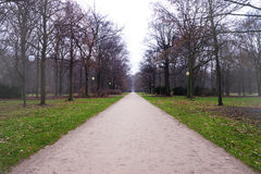 Alley in tiergarten berlin Stock Images