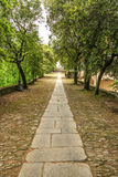 Alley to Sanctuary of Nostra Signora di Montallegro Stock Photos