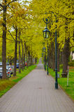 The alley with trees and lanterns in the park Stock Images