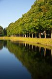 Alley of trees reflection in water Royalty Free Stock Photography