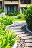 Alley in tropical garden Stock Image