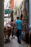 Alley in Varanasi Stock Photography