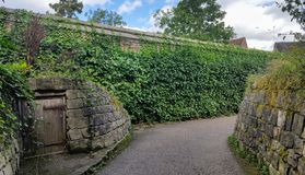 An alley with vegetation around. A path with a Wall of brick on one side an vegetation on the other side stock photography