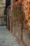 Alley view Stock Images