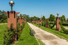 Alley Way In Herastrau Public Park Royalty Free Stock Images
