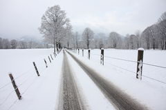 Alley in winter. Snowy road in the winter Stock Photo