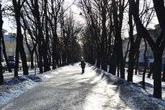 Alley at winter in St.Petersburg. Stock Photos