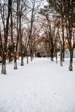 Alley in winter Stock Photos