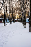 Alley in winter Royalty Free Stock Image