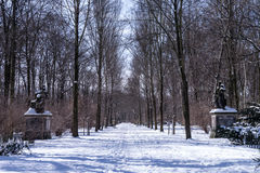 Alley in winter Stock Photo