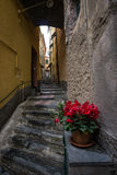 Alleys of Vernazza Stock Photography