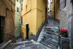 Alleys of Vernazza Stock Photo