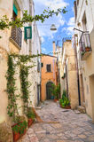 alleyway Altamura La Puglia L'Italia Immagini Stock Libere da Diritti